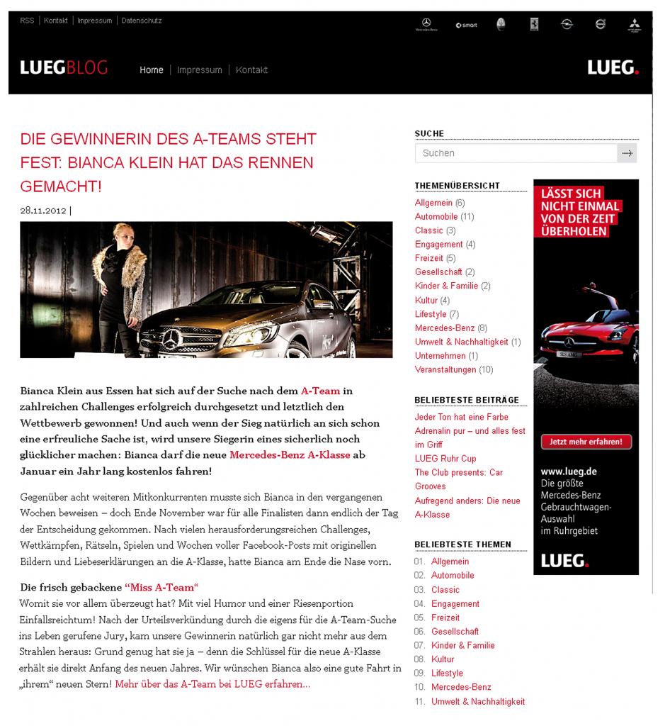 Luegblog_Siegerartikel